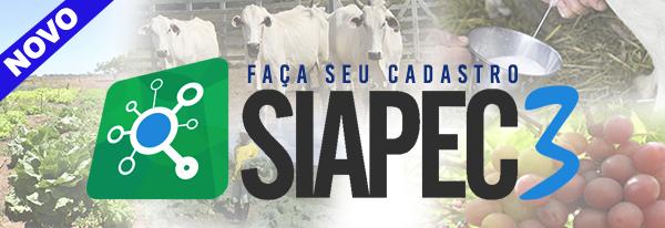 Banner - SIAPEC